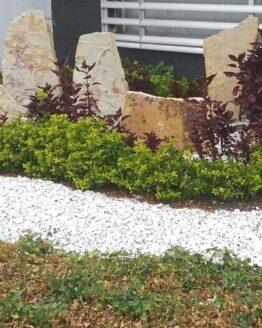 piedra decorativa para jardines blanca5